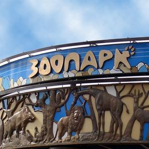Зоопарки Суздаля